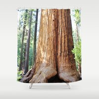 giants Shower Curtains featuring Trail of 100 Giants by Kim Lucian Photography