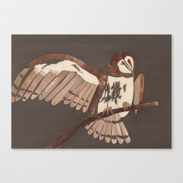 American Barn Owl Canvas Print