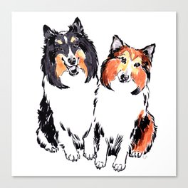 Shetland Sheepdogs Canvas Print