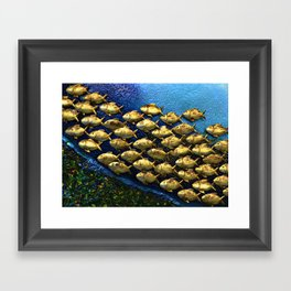And They Swam  Framed Art Print