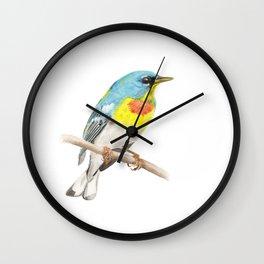 Northern Parula Wall Clock