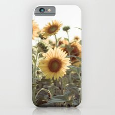 A Sunflower Story iPhone 6s Slim Case