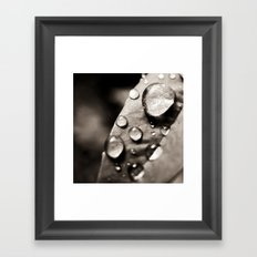 None Of Them Paused Before They Fell Either Framed Art Print