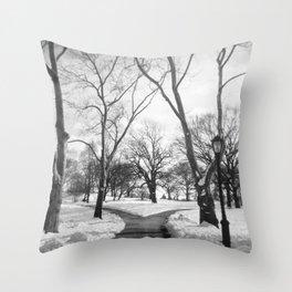 Central Park, NY Throw Pillow