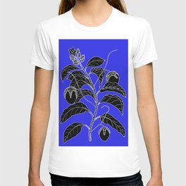 Western Nightshade (also know as Bush Tomato ) - Solanum chippendolei or Solanum coactilferum T-shirt