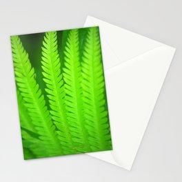 a green Fern Stationery Cards