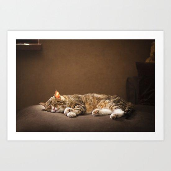 Cat sleep Art Print