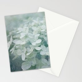 Veiled Beauty Stationery Cards