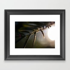Flashlight Framed Art Print
