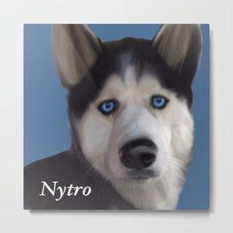 Nytro Metal Print