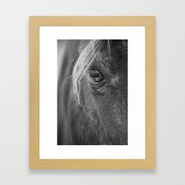 Seen Thru The Eye Framed Art Print