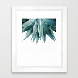Agave fringe Framed Art Print