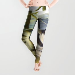 Hare-Indian Dog Leggings