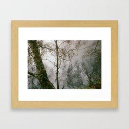 Murky Waters - 35mm film Framed Art Print