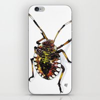 bug iPhone & iPod Skins featuring Bug by MSRomeiro