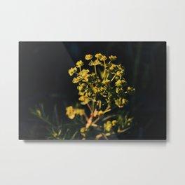 flowered sunset Metal Print