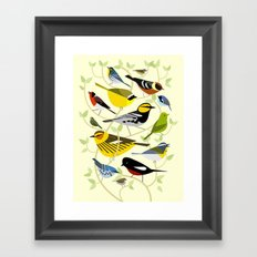 New World Warblers 3 Framed Art Print