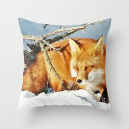 Algonquin Red Fox in the Snow Throw Pillow