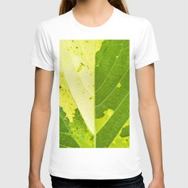 Leaf with abstract patterns 1 T-shirt