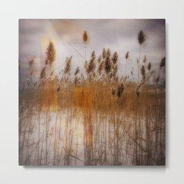 Beach Grass 3 Metal Print