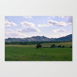 The Wichitas Canvas Print