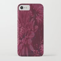 burgundy iPhone & iPod Cases featuring Burgundy Chrysanthemums by Judy Palkimas