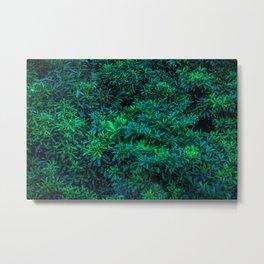 Odaiba Overgrowth Metal Print