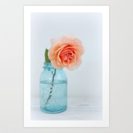 Rose in a Jar Art Print