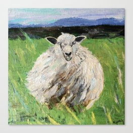 Big fat wooly sheep Canvas Print