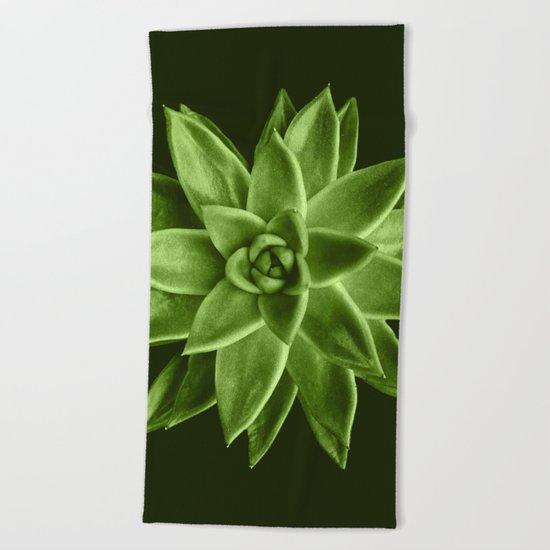 Greenery succulent Echeveria agavoides flower Beach Towel