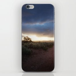 New Mexico Sunset iPhone Skin