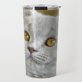 Young British Shorthair cat Travel Mug