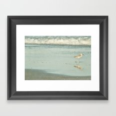 Exit Stage Right -- Willet Foraging Shallow Surf at the Beach Framed Art Print