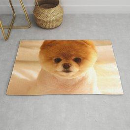 Adorable Pomeranian Puppy Rug