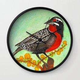 Loica bird Wall Clock