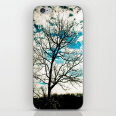 Bare Tree & Clouds iPhone & iPod Skin