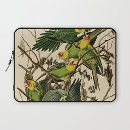 Vintage Parrot Illustration Laptop Sleeve