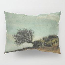 The Timeless Landscape Pillow Sham