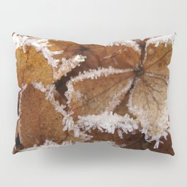 Pee Gee Hydrangea Trimmed with Frost Pillow Sham