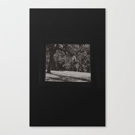 A chilling spine Canvas Print