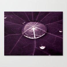 purple water drop XVI Canvas Print