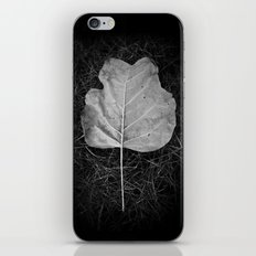 """""""The fall of a leaf is a whisper to the living"""" iPhone & iPod Skin"""