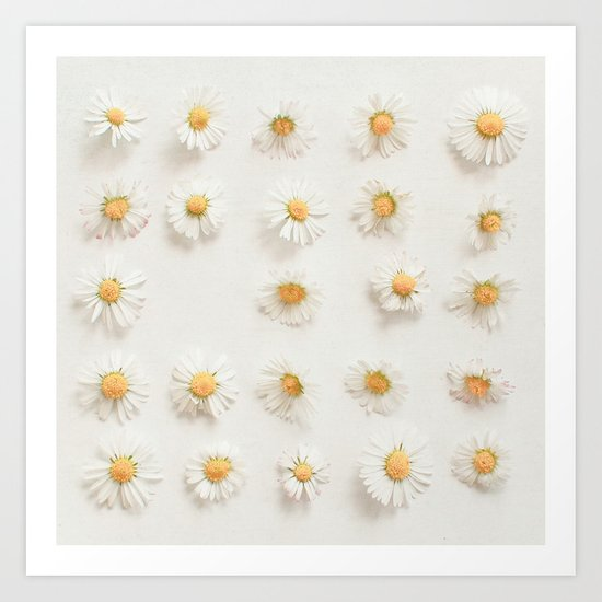 Daisy Collection Art Print
