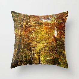 Woods Lake Trail Throw Pillow