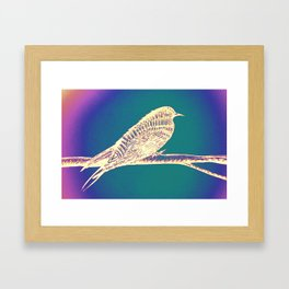 Bird Aura Framed Art Print