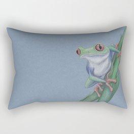Red-Eyed Tree Frog by Lars Furtwaengler   Colored Pencil   2010 Rectangular Pillow