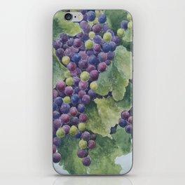 Napa Valley Grapes iPhone Skin