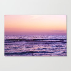 Wild Dream Canvas Print