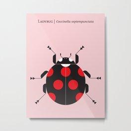 Ladybug Pink Metal Print
