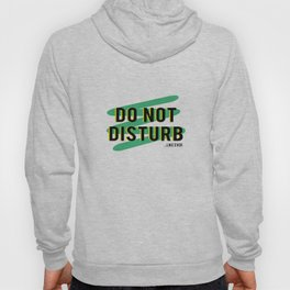 Do Not Disturb...Like Ever Hoody